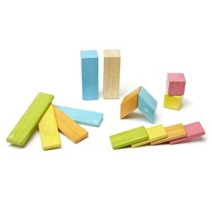 Tegu - Set 14 piese din lemn magnetic (14P-TNT-306T)