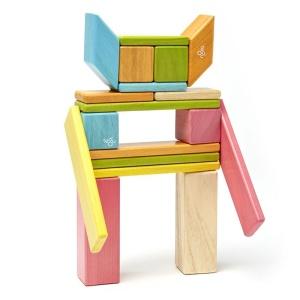 Tegu - Set 24 piese din lemn magnetic (24P-TNT-306T)